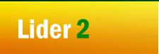 Lider2 - Meble na wymiar